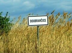 doubra_cedul